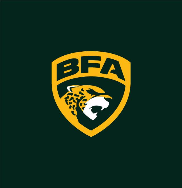 Logo-Liga-BFA-2020-Nacione-Branding-08