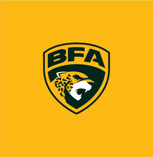 Logo-Liga-BFA-2020-Nacione-Branding-09