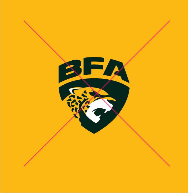 Logo-Liga-BFA-2020-Nacione-Branding-Versões-Erradas-13-13