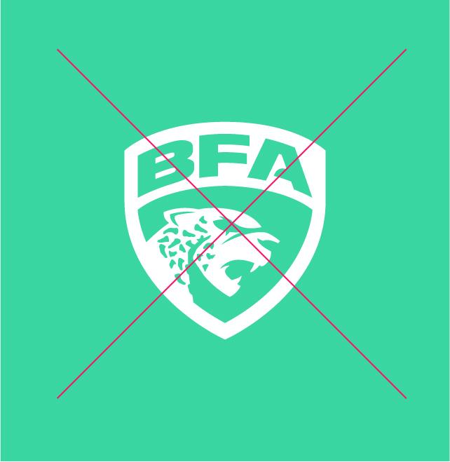 Logo-Liga-BFA-2020-Nacione-Branding-Versões-Erradas-13-216