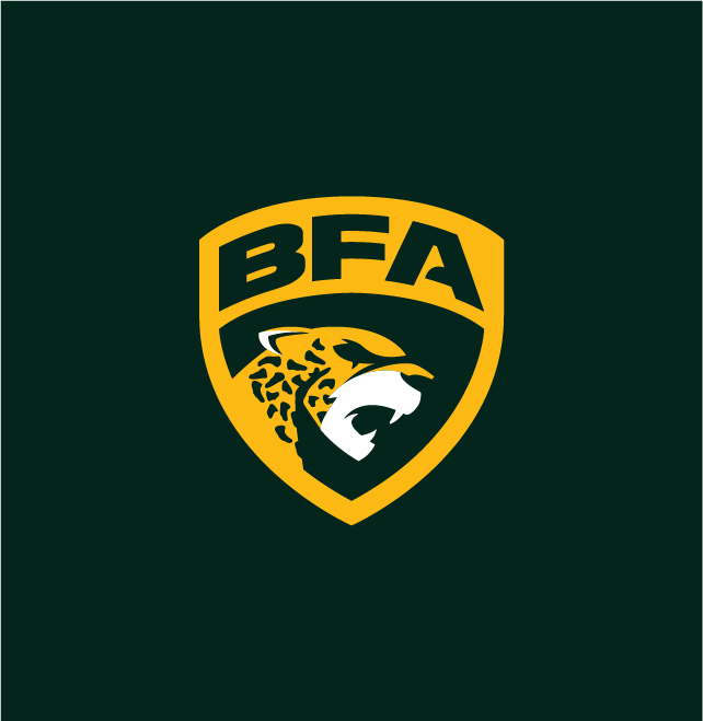 Nacione-Branding-Logo-Liga-BFA-2020