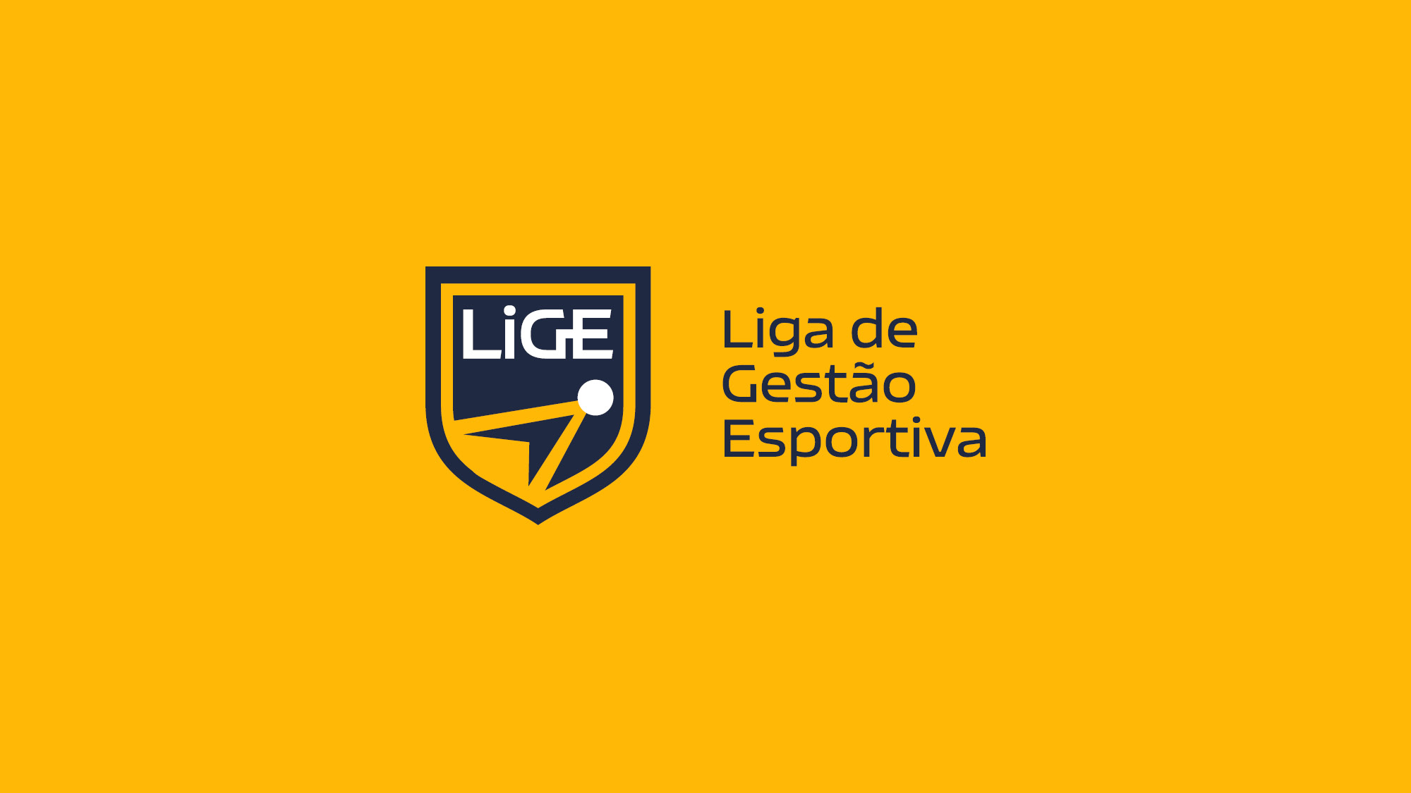 Lige-FGV-SP-Nacione-Branding14