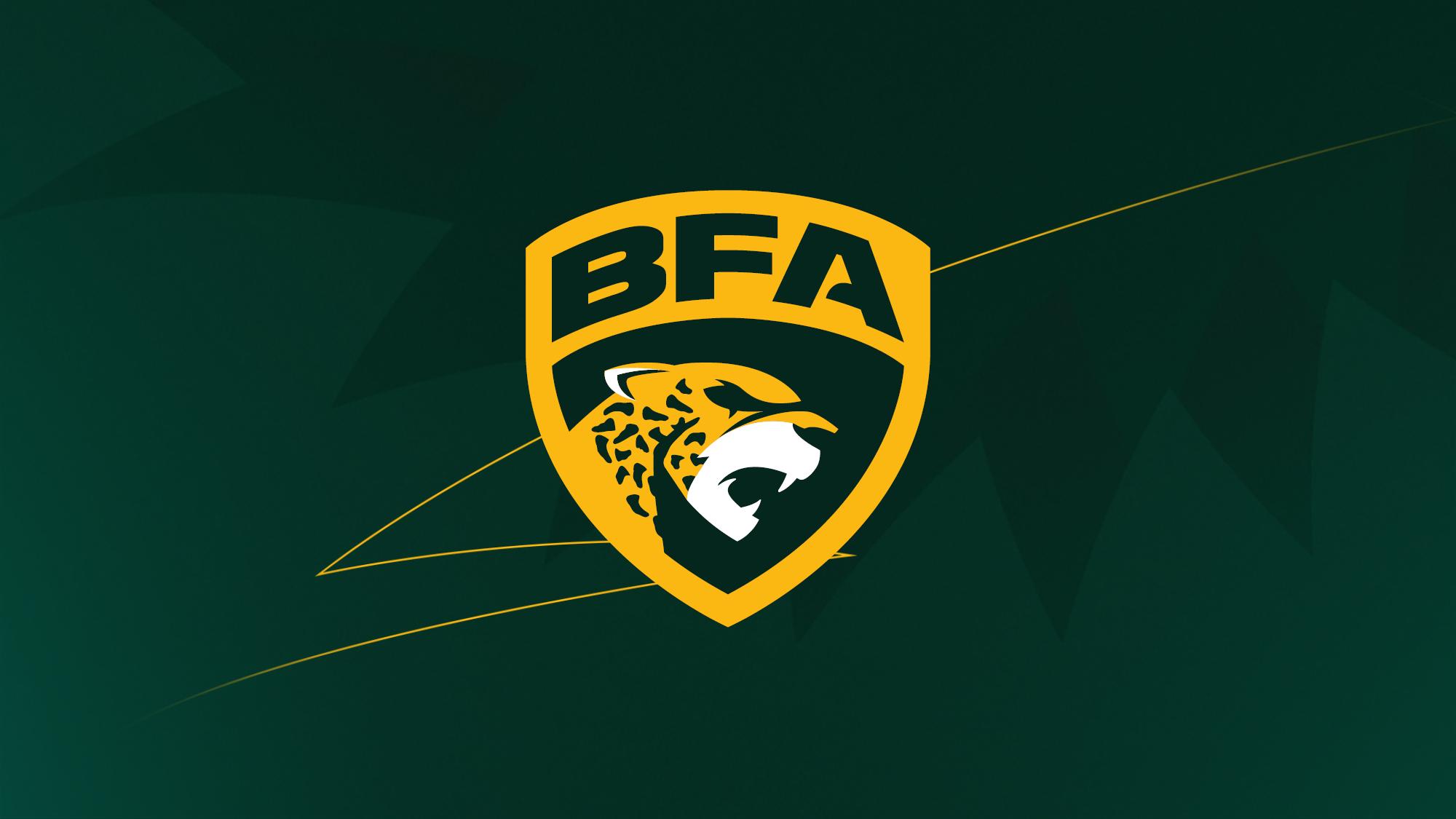Liga BFA